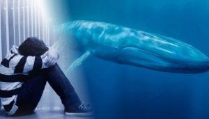 jogo baleia azul | depressão